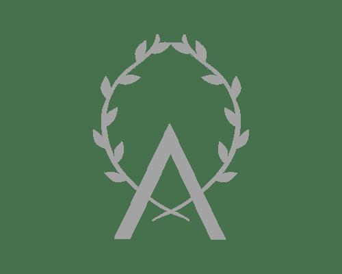 LogoBarreAlcyosSansTexteGris